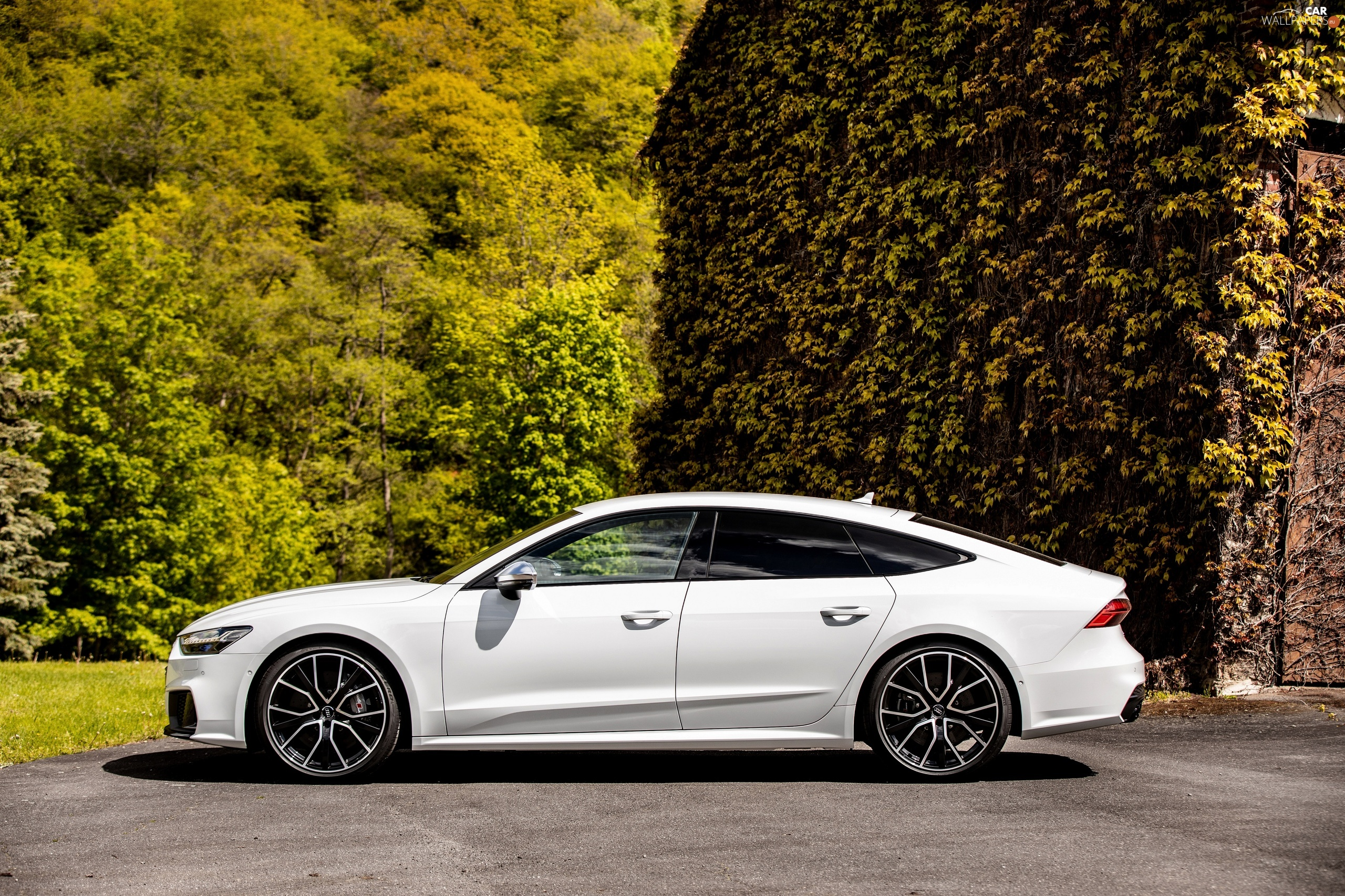 S7, White, viewes, house, trees, Audi A7