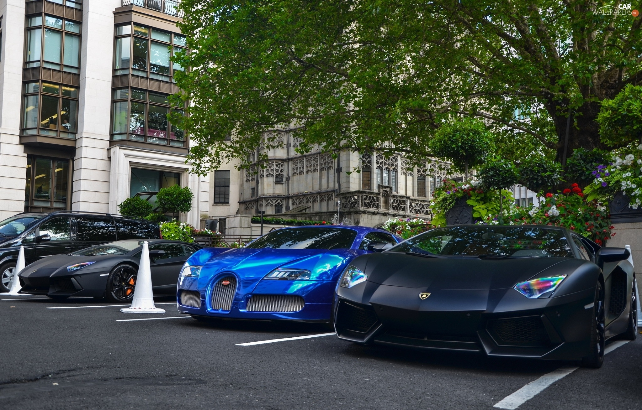 Blue Black Lamborghini Aventador Bugatti Veyron Cars Wallpapers