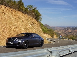 Mat, Bentley Continental GTC, Black