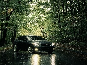 trees, viewes, Lexus IS, Way, Gray