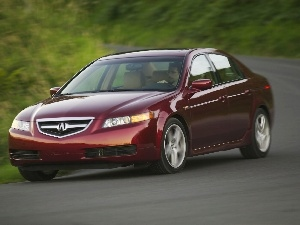 Cherry, driver, turn, Acura TL